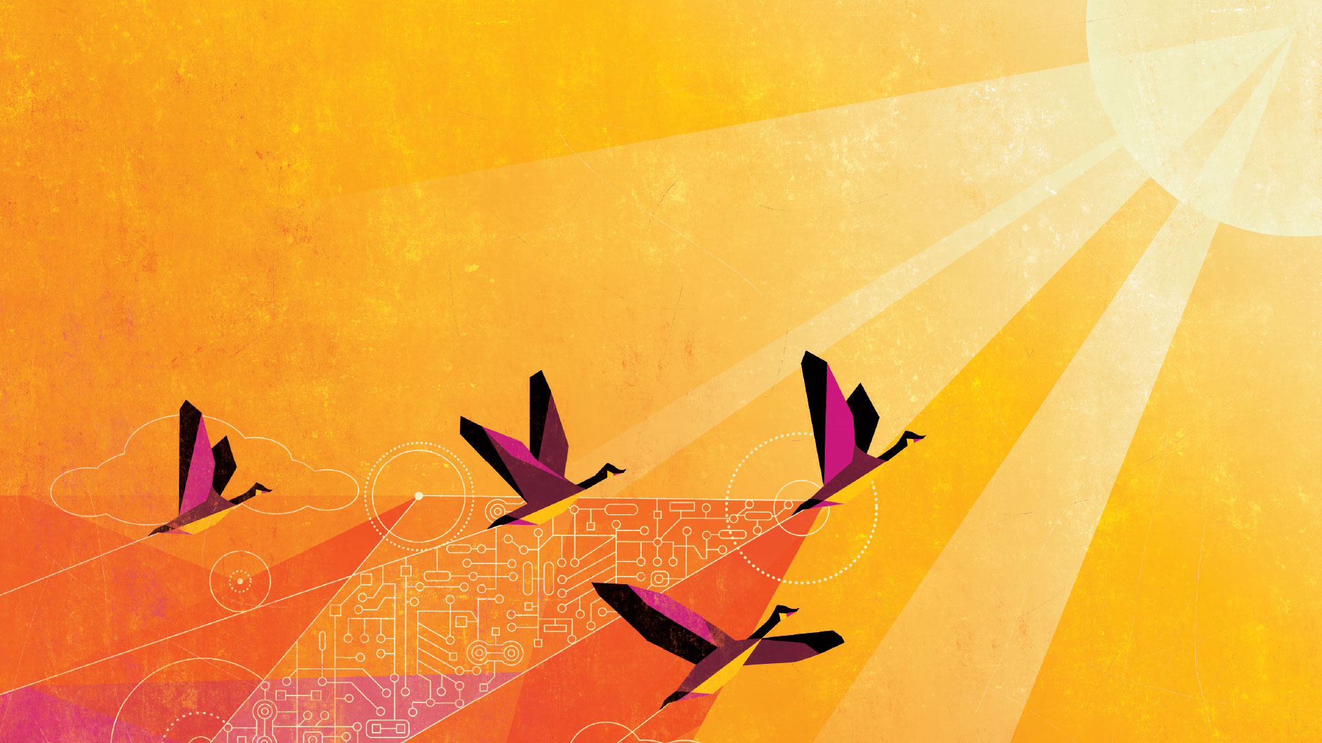 Illustration of geese on orange background